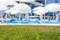 Green lawn on hotel beach background with deck chairs and umbrel Stock Image