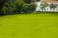 Green Lawn in Landscaped Formal Garden. Royalty Free Stock Photo