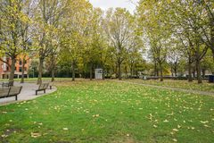 Green lawn in London park with bench and tall trees. Green lawn in London public park with bench and tall trees Stock Images