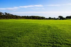 Green lawn at Margam country park grounds, Whales. United Kingdom royalty free stock photography