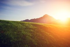 Green lawn with a mountain at sunset. Green lawn with a mountain on a background at sunset Royalty Free Stock Photo