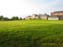 Green lawn outside home Royalty Free Stock Image