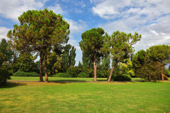The green lawn in Park Sigurta Royalty Free Stock Photos