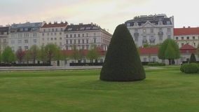 Green lawn with shrubs and trees in the city near the road and buildings.  stock video footage