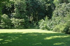 Green lawn in the summer park. A small glade with trees and a green grass in the city summer park stock photography