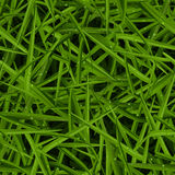 Green lawn texture with water drops in a seamless pattern Stock Photo