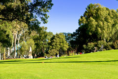 Green lawn in public Stock Images