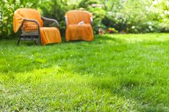 Green lawn with two wicker chairs in the garden. Green lawn with two wicker chairs in the beautiful, sunny garden in the background stock photography