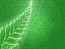 Green Leaf. Illustration of a beautiful green background with abstaktnogo ferns Stock Photo