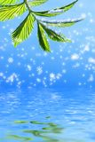 Green leaf. On abstract snowflake background reflected in rendered water Royalty Free Stock Image
