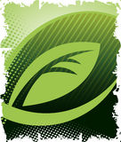 Green leaf. Abstract eco background.Vector illustration Royalty Free Stock Images
