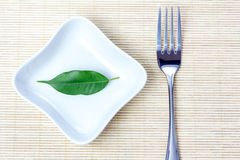 Green leaf as vegetarian diet. Green leaf on a plate as vegetarian diet - concept of healthy dieting Royalty Free Stock Photo