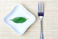 Green leaf as vegetarian diet Royalty Free Stock Photo