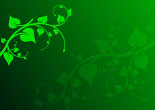 Green leaf background. Green gradient background with leaf Stock Photo
