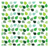 Green Leaf Background. For putting quote in Stock Images