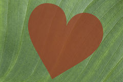 Green leaf background with a red heart. Green leaf texture background with a red heart in the middle Stock Photography