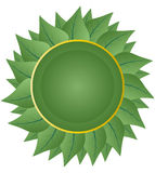 Green leaf badge Royalty Free Stock Images