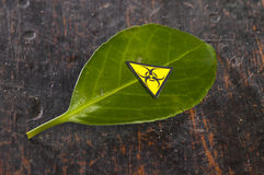 Green leaf with biohazard sing Royalty Free Stock Images