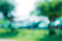 Green leaf bokeh blur Royalty Free Stock Photos