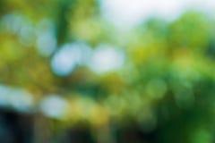 Green leaf bokeh blur Stock Images