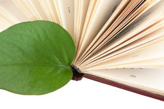 Green leaf bookmark in a book Royalty Free Stock Images