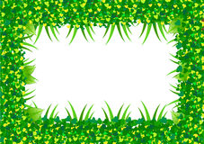 Green leaf border Royalty Free Stock Photo