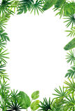 Green leaf border background. On white royalty free stock photo