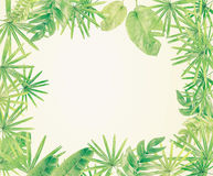Green leaf border background royalty free stock photography