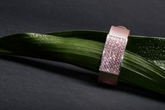 Green leaf and bracelet Royalty Free Stock Photo
