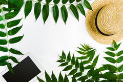 Green leaf branches, tablet and straw haton white background. flat lay, top view. stock photography