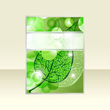 green  leaf and bright balls Royalty Free Stock Photos