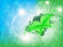 Green Leaf Butterfly Background Royalty Free Stock Photos