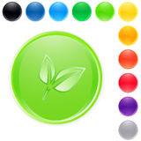 Green leaf button vector Royalty Free Stock Photography