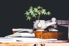 Green Leaf Cannabis Plant on White Ceramic Pot Beside White and Black Desk Phone on Brown Wooden Table Stock Photo