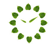 Green leaf clock Stock Images