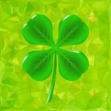 Green Leaf Clover Stock Photo
