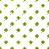 Green leaf clover pattern Stock Photo