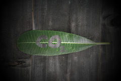 Green leaf with co2 text on black wood background abstract and v Royalty Free Stock Photography