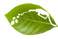Green leaf with a cut out fuel Stock Images