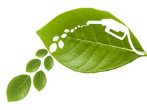 Green leaf with a cut out fuel II Stock Photos