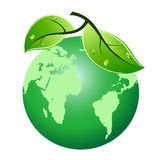 Green leaf earth icon Stock Photography