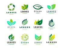 Green leaf eco design friendly nature elegance symbol and natural element ecology organic vector illustration. Green leaf eco design element icon friendly Royalty Free Stock Photo