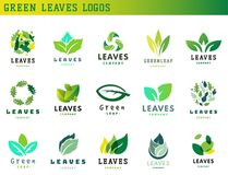 Green leaf eco design friendly nature elegance symbol and natural element ecology organic vector illustration. Green leaf eco design element icon friendly Royalty Free Stock Image