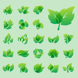 Green leaf eco design friendly nature elegance symbol and natural element ecology organic vector illustration. Royalty Free Stock Photos