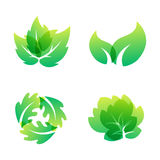 Green leaf eco design friendly nature elegance symbol and natural element ecology organic vector illustration. Royalty Free Stock Photography
