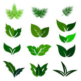 Green Leaf Eco Icons Set. Green Leaf Eco Icons Isolated on White Background. Different Shapes Vector Set Stock Photo