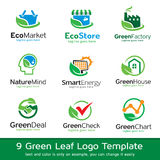 Green Leaf Eco Template Design Vector Royalty Free Stock Photo