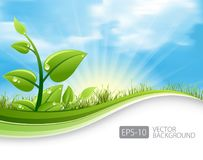 Green leaf ecology concept with grass waves and blue sky background. Eco-friendly abstract background . vector stock illustration .eps 10 royalty free illustration