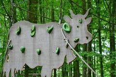 Green, Leaf, Fauna, Tree Stock Photo