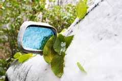 Green leaf and first snow on cars Stock Images